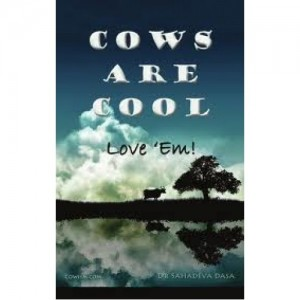Cows are cool (English)