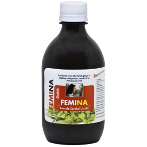Femina for Gynea Problems 400 ML